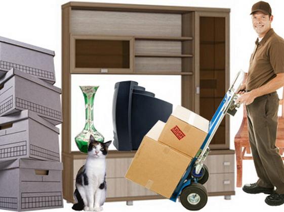 Как заказать переезд квартиры?